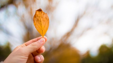 Photo of AccuWeather objavio opsežnu prognozu za jesen, evo što nas sve čeka