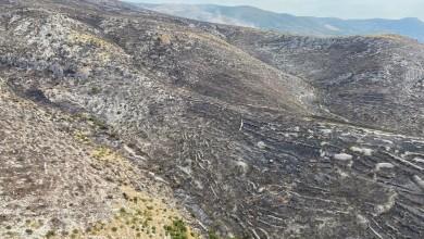 Photo of U odnosu na 2020. imali smo manje požara, ali je izgorjela veća površina