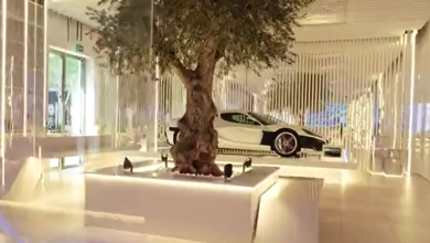 Photo of VIDEO Živa maslina, Jadransko more, Rimčeva Nevera – pogledajte što smo sve predstavili na najvećoj gospodarskoj izložbi na svijetu